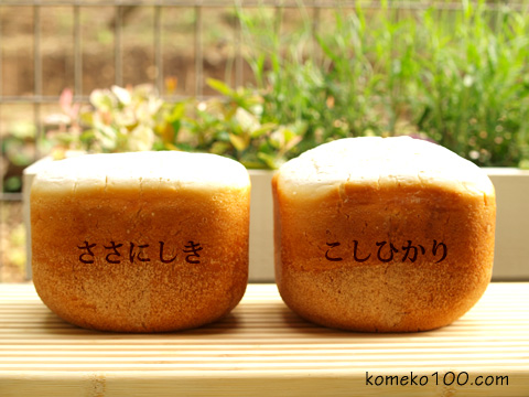 sasanishiki_koshihikari_1.jpg
