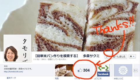 121108_Thanks300_page.jpg