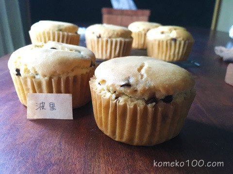 160531_komeko5.jpg