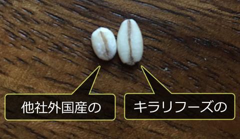 200504_kirari07.jpg